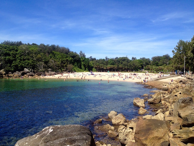 Shelly Beach, a great free things to do in Sydney
