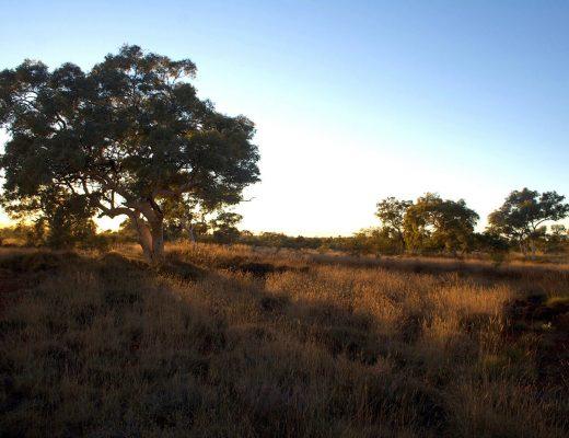 Camping Around Australia Guide