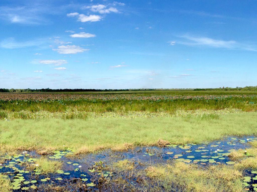 Mamukala Wetlands, Kakadu