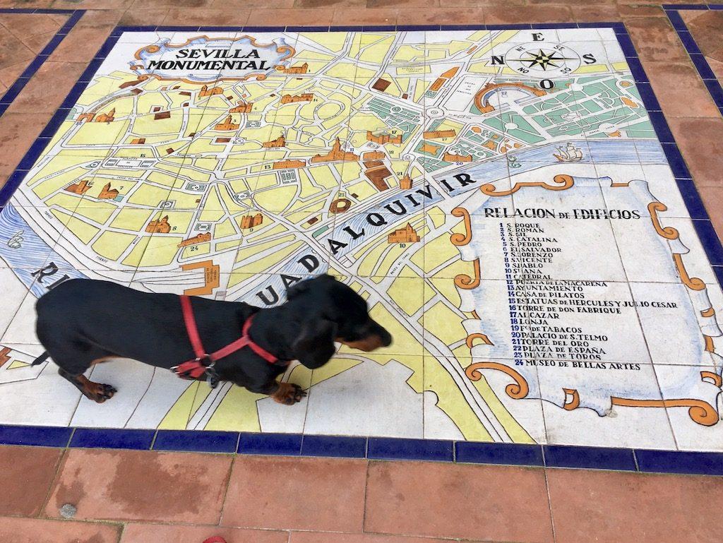 Schnitzel Exploring Seville