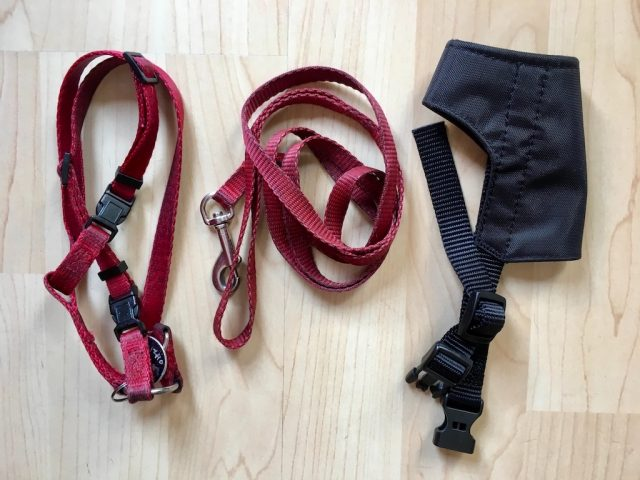 Dog Harness & Muzzle