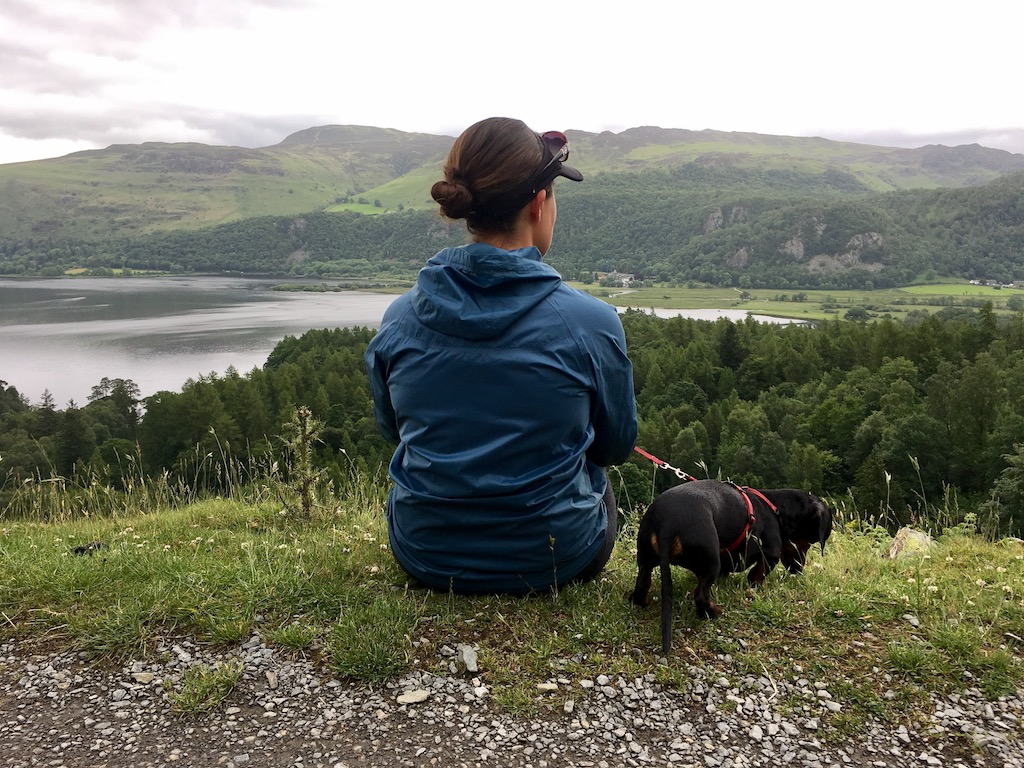 Travelling in the UK with a dog