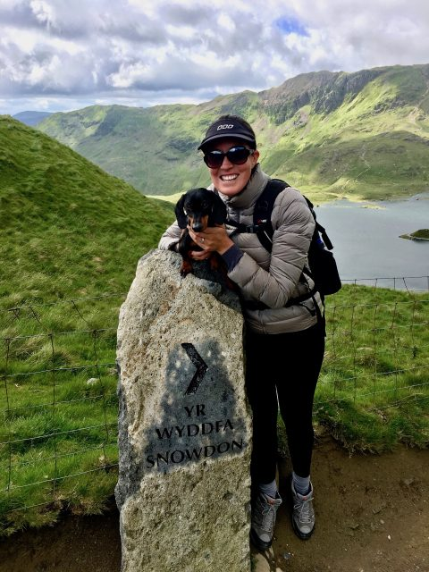 Climbing Snowdon with a dog: Snowdon Marker