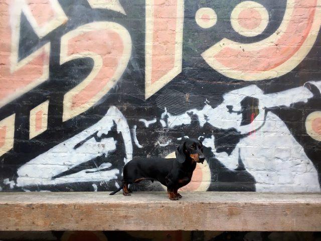 Banksy Dogwork