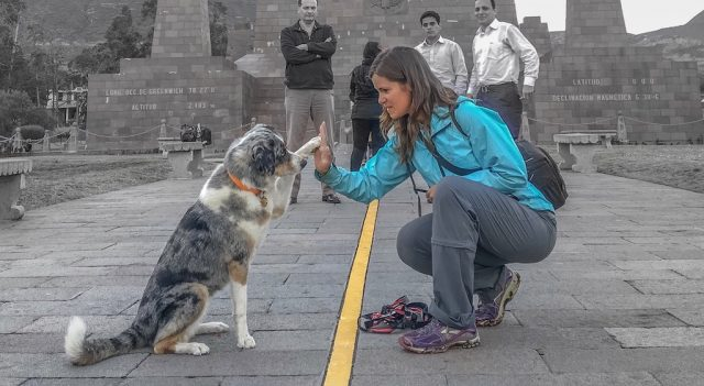 Dog-Friendly Quito