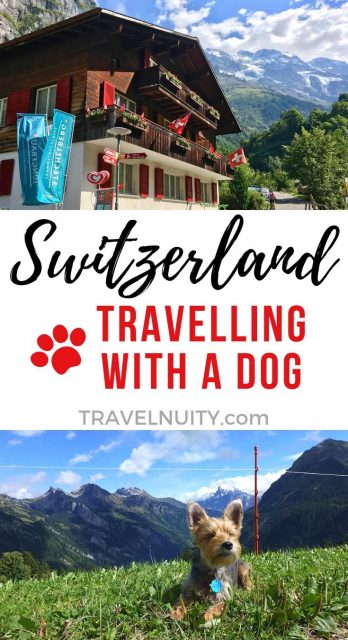 Dog-friendly Switzerland