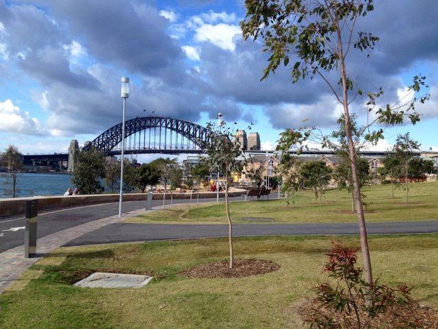 Dog-friendly Barangaroo Reserve Sydney