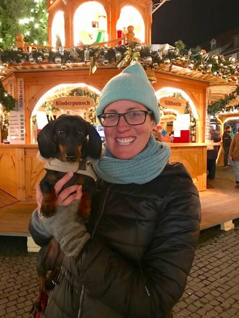 Dog at Christmas Market in Germany