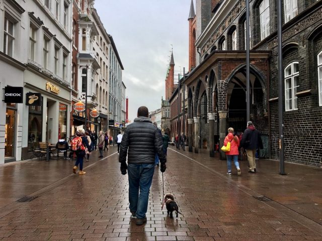 Dog-friendly sightseeing in Germany