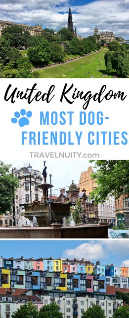UK Most Dog-Friendly Cities