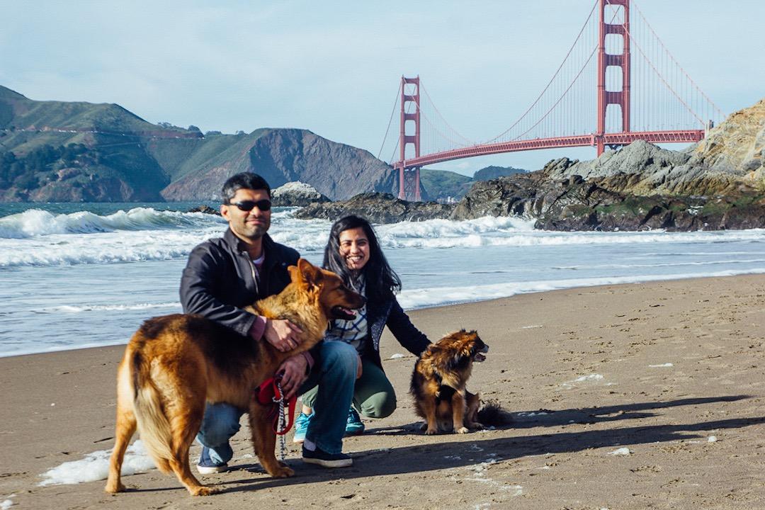 Hotel Dog Friendly San Francisco