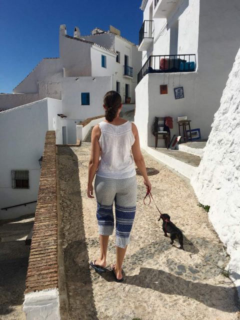 Dog-friendly sightseeing in Spain