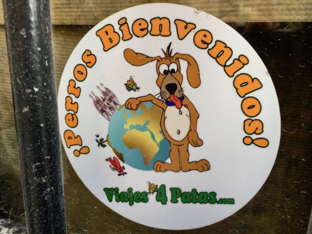 Dog-friendly restaurants in Spain