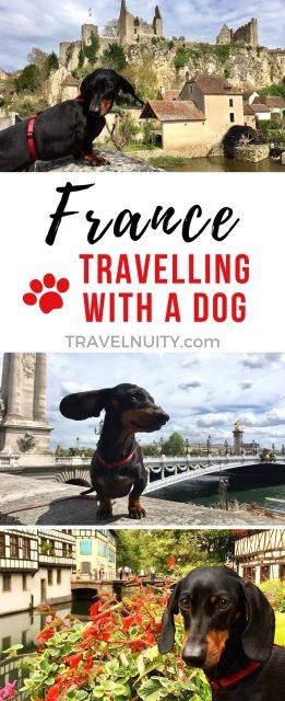 France Dog-Friendly Travel