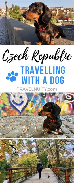 Czech Republic Dog-Friendly Travel