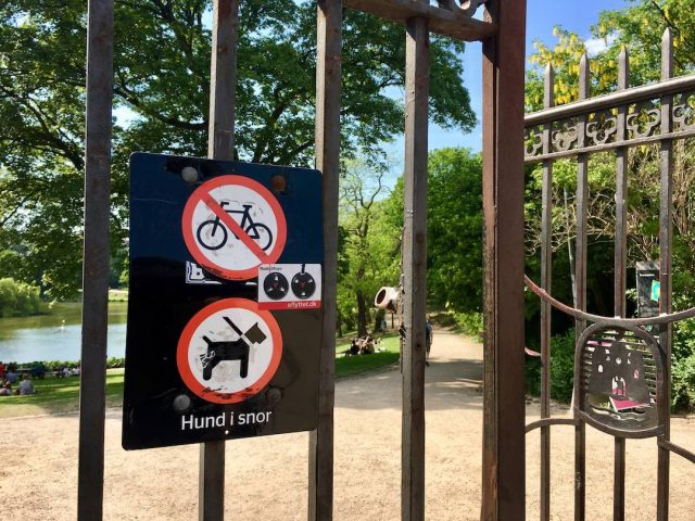 Dog-friendly parks in Copenhagen