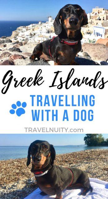 Greek Islands with a Dog