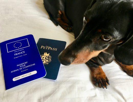 Dog passports