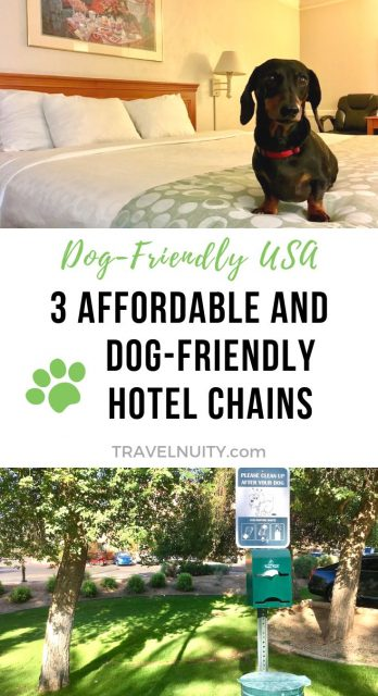 Pet-friendly hotel chains USA