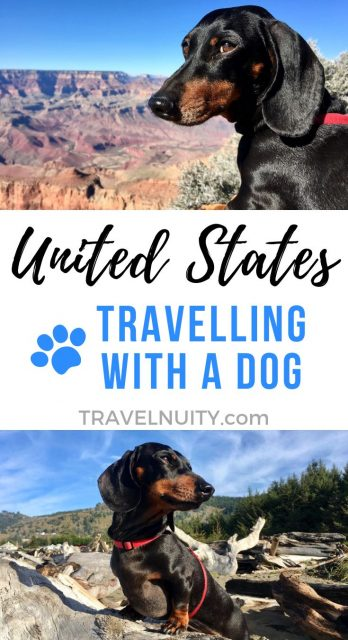 USA Dog-Friendly Travel