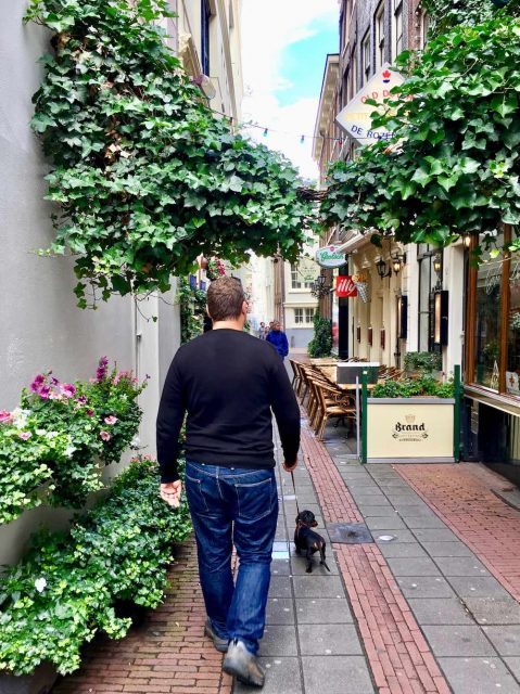 Dog-friendly Amsterdam