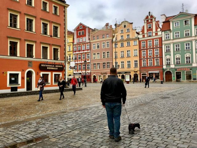 Travelling in Poland with a dog