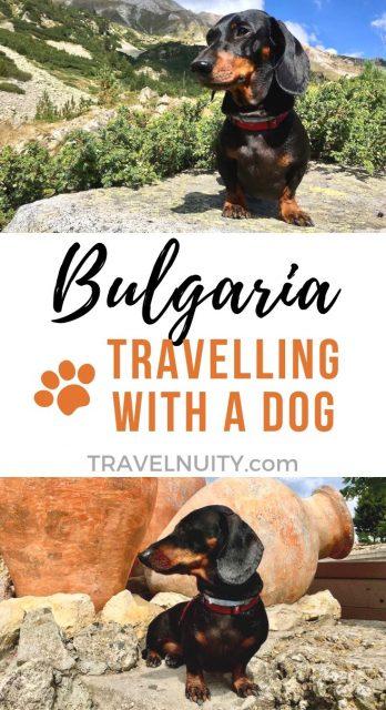 Dog-Friendly Bulgaria
