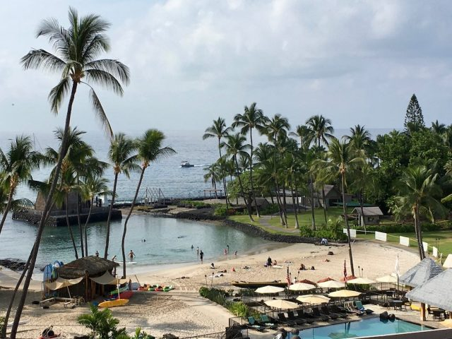 Pet travel Hawaii