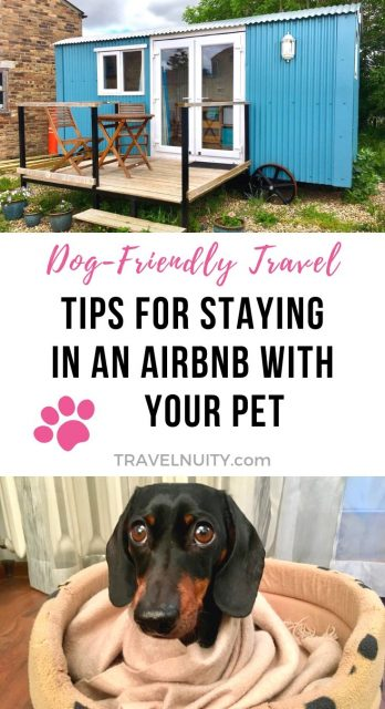 pet-friendly Airbnb tips