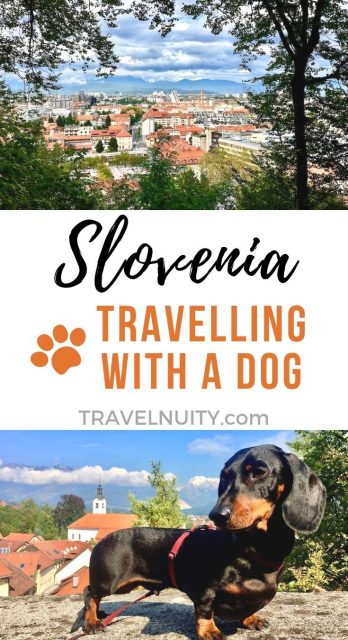 Slovenia Dog-Friendly Travel