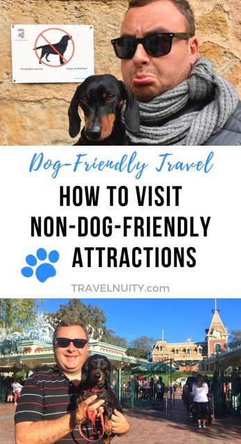 Visit Non-dog-friendly attractions