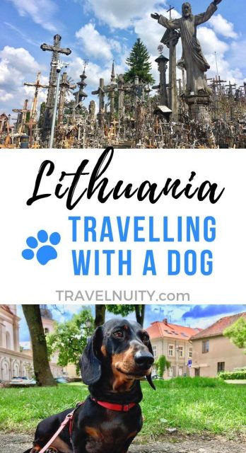 Lithuania Dog-Friendly Travel