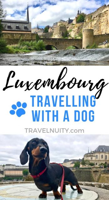 Luxembourg Dog-Friendly Travel