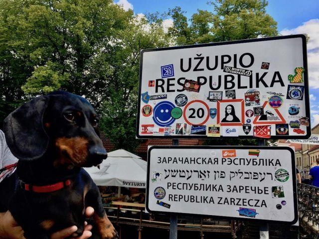 Dog-friendly Užupis