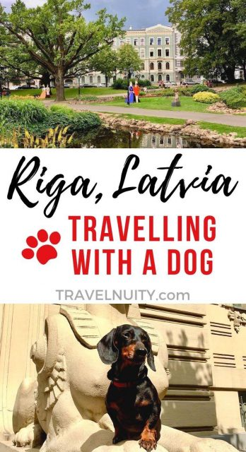 Riga Dog-Friendly Travel
